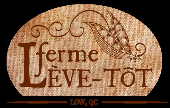 FLT-logo-linenoval